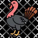 Turkey Chicken Animal Icon