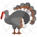 Turkey Thanksgiving Farmer Icon