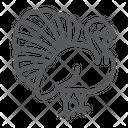 Turkey Bird Icon