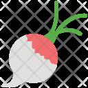 Turnip Rutabaga Vegetable Icon