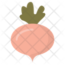 Turnip White Turnip Fodder Radish Icon