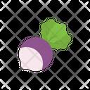 Turnip Vegetable Radish Icon