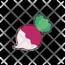 Turnip Vegetable Food Icon