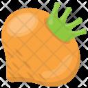 Turnip Vegetable Root Icon