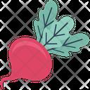 Vegetable Food Root Vegetable Icon