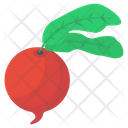 Turnip Vegetable Icon