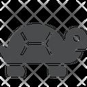 Animal Pet Animal Water Creature Icon