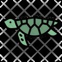 Turtle Sea Aquarium Icon