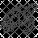 Turtle Animal Life Icon