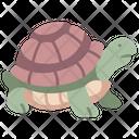 Garden Turtle Animal Icon