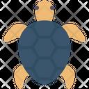 Turtle Animal River Icon