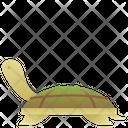 Turtle Animal Pet Icon
