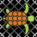 Turtle Tortoise Reptile Icon