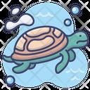 Tortoise Animal Sea Icon