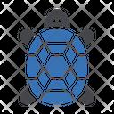 Turtle Tortoise Water Icon