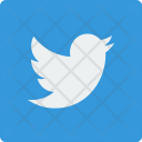 Twitter Social Square Icon