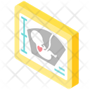 Ultrasound pregnancy Icon