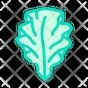 Ulva Icon