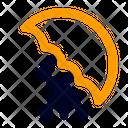 Umbrela Icon