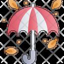 Umbrella Leaf Autumn Icon