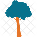 Generic Tree Umbrella Icon