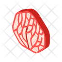 Underwater Coral Isometric Icon