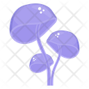 Underwater Mushroom Shiitake Mushroom Fungi Icon