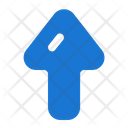 Up Arrow North Icon