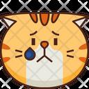 Upset Emoticon Cat Icon