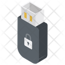 USB Lock Icon