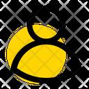 User Profile Ui Icon