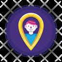 User Location User Location Icon