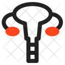 Utherus Icon