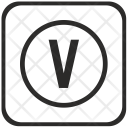 Letter Virtual V Icon