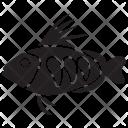 Platyfish Pet Underwater Icon