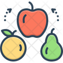 Variety Different Kind Icon