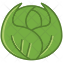 Vegetable Cabbage Food Icon