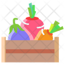 Avegetables Box Harvest Vegetables Icon