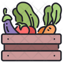 Vegetables Fruit Basket Begetable Basket Icon