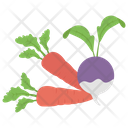 Vegetable Healthy Food Natural Diet Icon