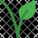 Vegetarian Symbol Food Icon