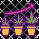 Vegetative Growth Plant Icon