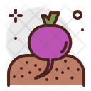 Veggies Icon