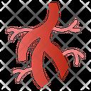 Veins Icon