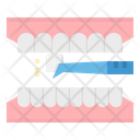 Veneer Tooth Icon