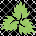 Veppilai Flower Arrangement Icon