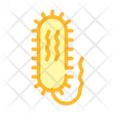 Vibrio Cholerae Color Icon