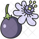 Fruit Vegan Plant Icon