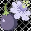 Vine Icon