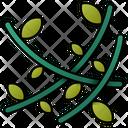 Vines Nature Vine Icon